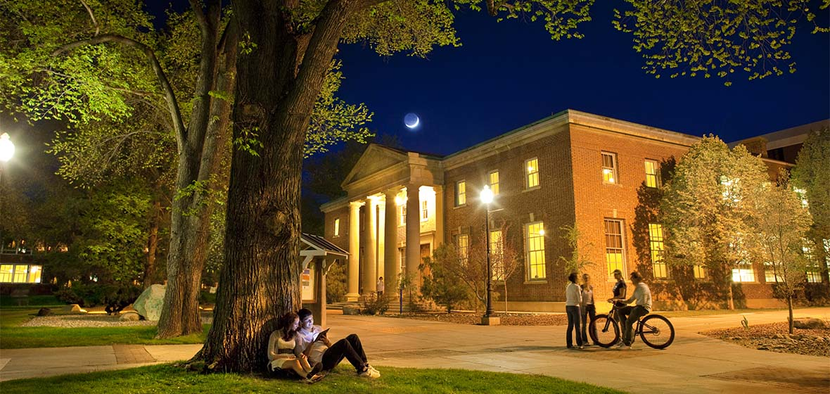 Students studying on the Quad on a warm summer evening