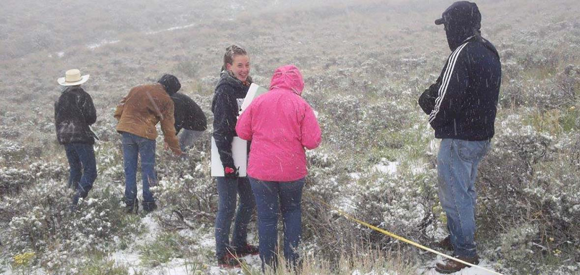 High school students looking at sagebrush during a snowfall in June