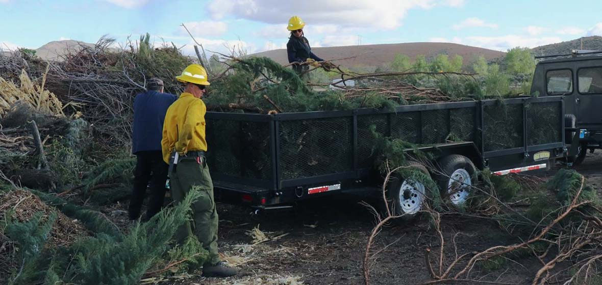 men with hard hats loading woody vegetation into a flatbed trailer