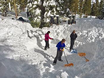 Researchers shovel snow around chickadee feeder