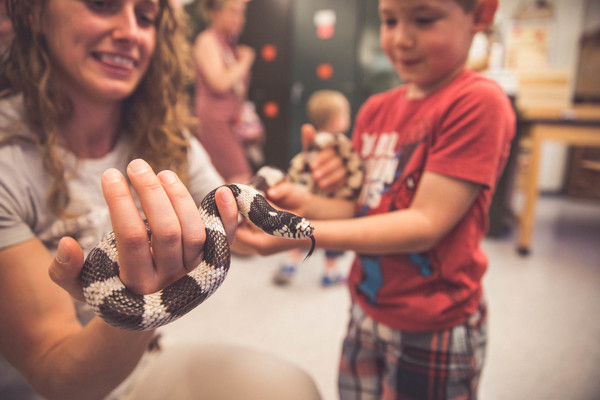 A museum volunteer shows a young visitor a king snake.