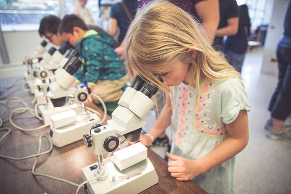 A young visitor looks into a microscope during the Day at the Museum event.