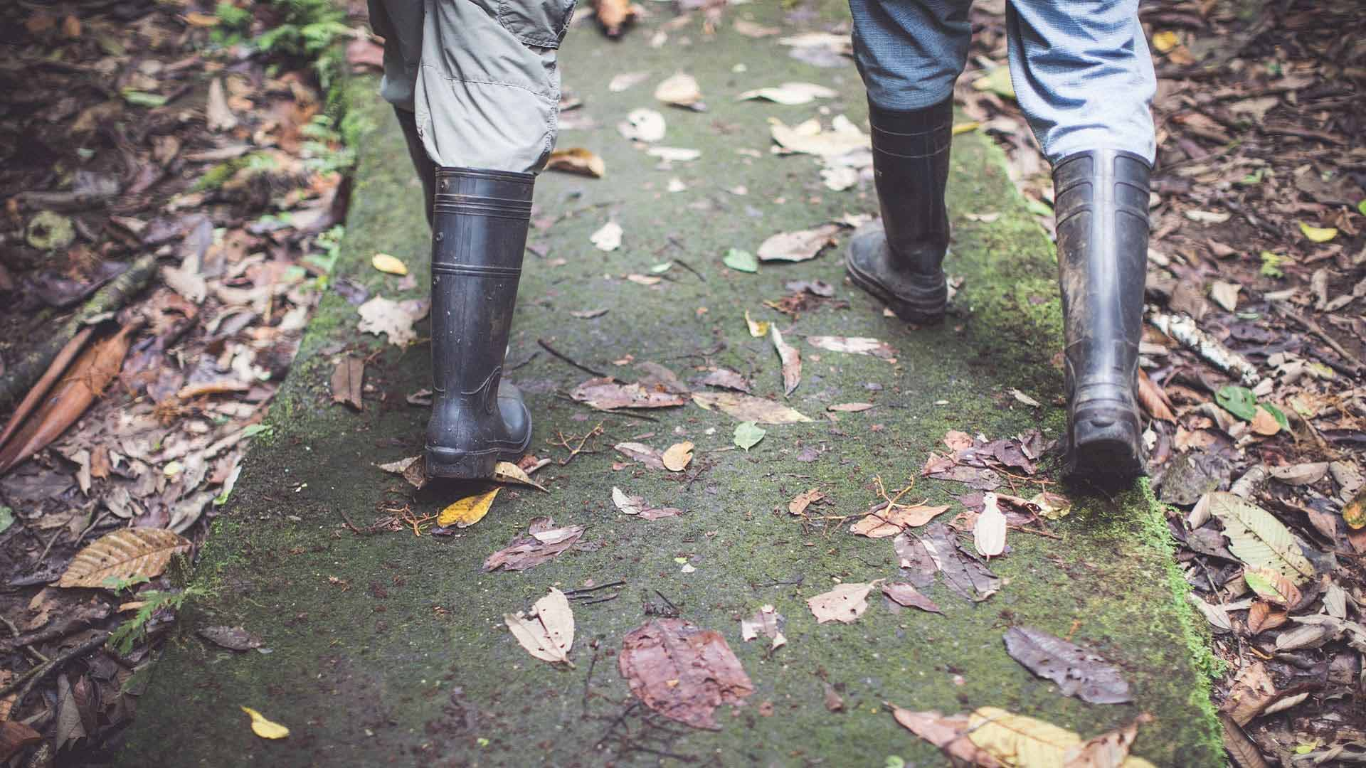 People walking along a path in the rain forest with just their rubber boots showing