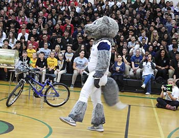 Wolfie Jr. at Clayton Middle School