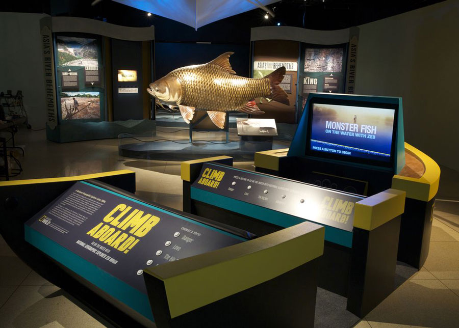 Museum exhibit showing large fish displays and interactive screens