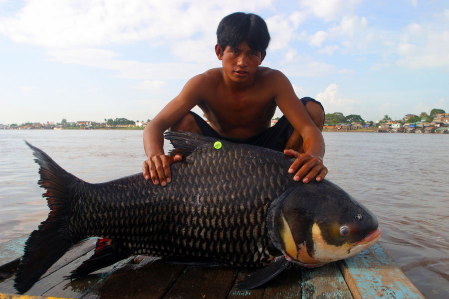 Young man poses for a photo on a dock with a large black fish