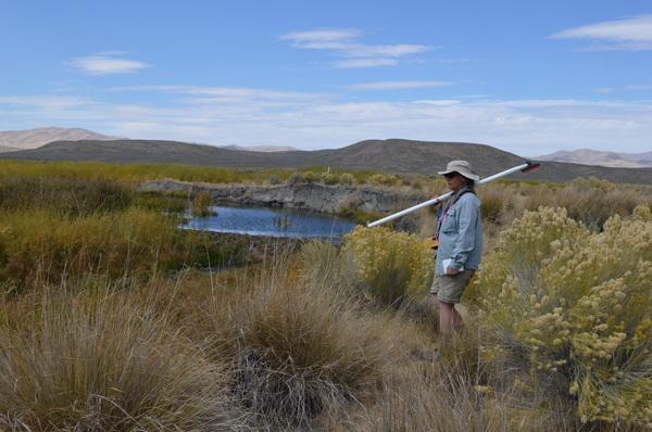 Tamzen Stringham surveying Maggie Creek beaver ponds in Carlin, Nevada.