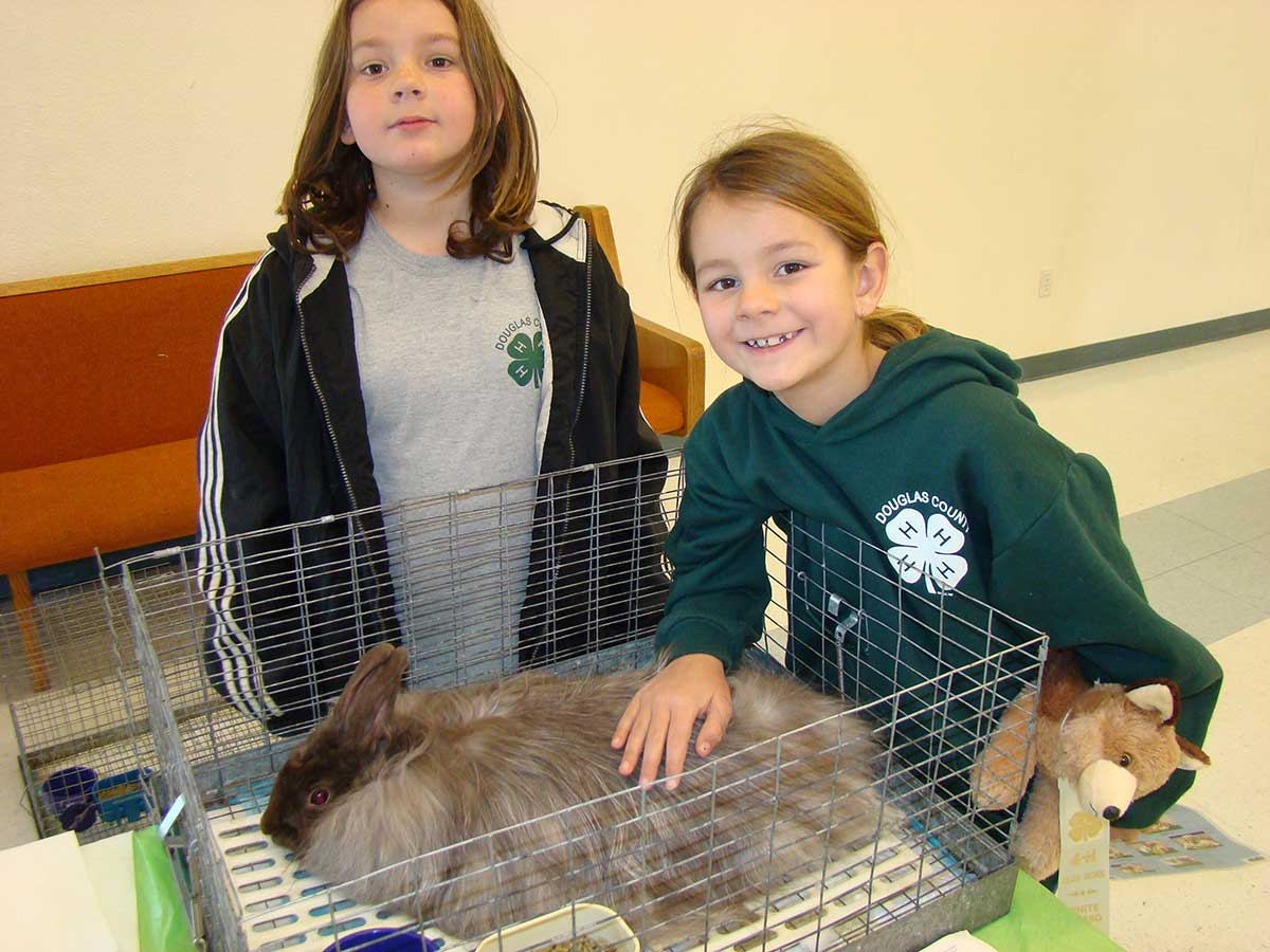 Two 4-H girls wearing 4-H shirts and sweaters stand next to their rabbit's open-top hutch. One girl is reaching into the cage and is gently petting the fluffy, brown and white rabbit.