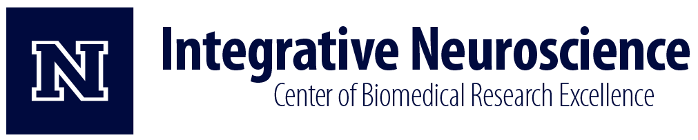 Integrative Neuroscience Center of Biomedical Research Excellence