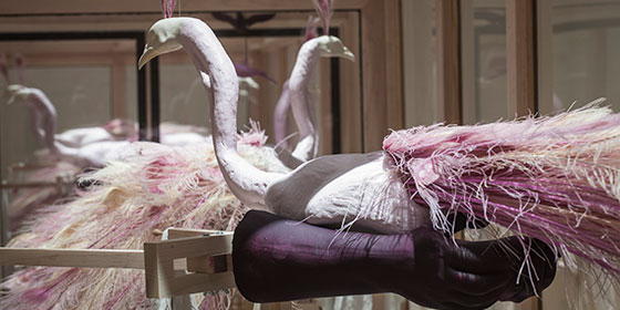 Two peacock sculptures stand in glass display case in art museum