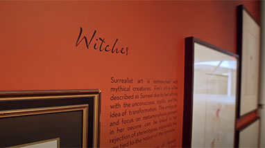 Leonor Fini exhibition wall about witches