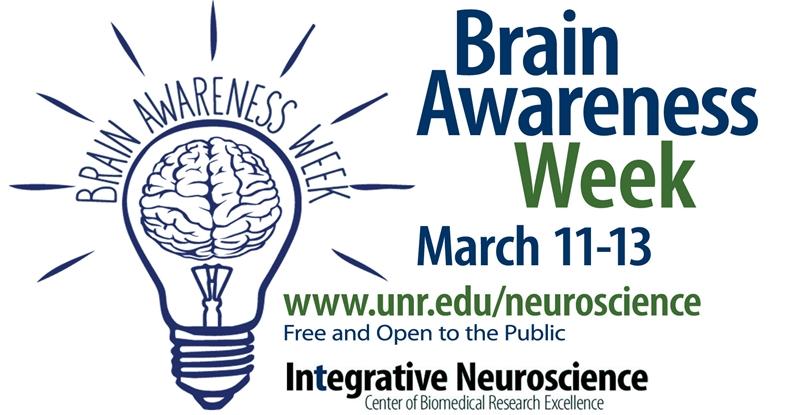 Brain awareness photo