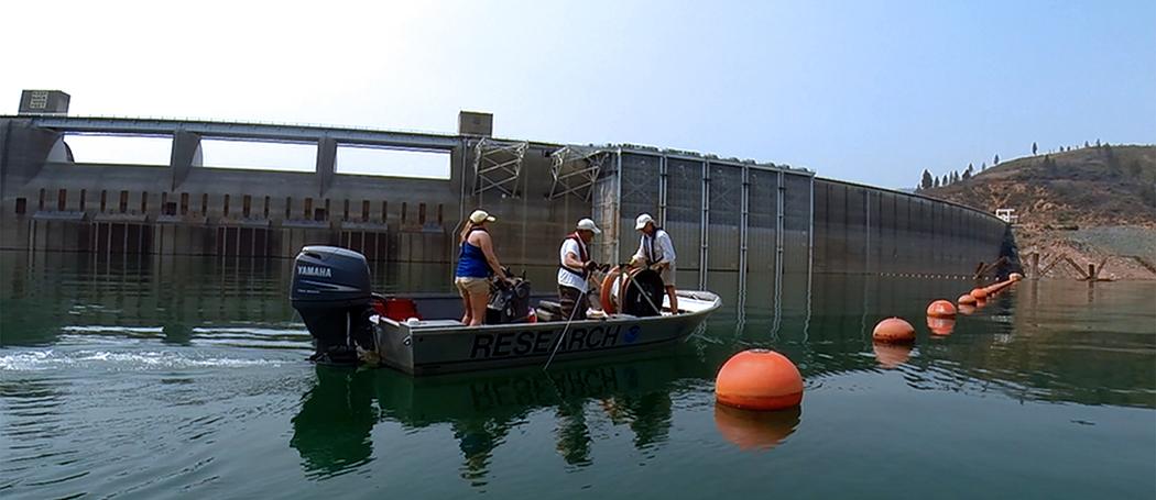 Scott Tyler CTEMPs at Shasta Lake