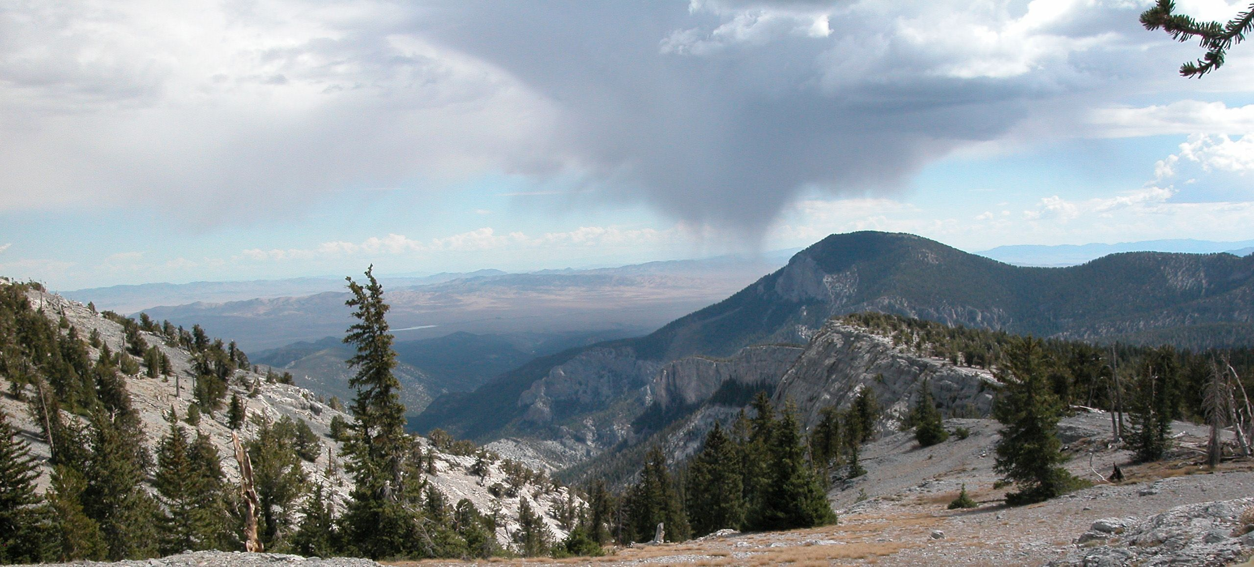 Great Basin view