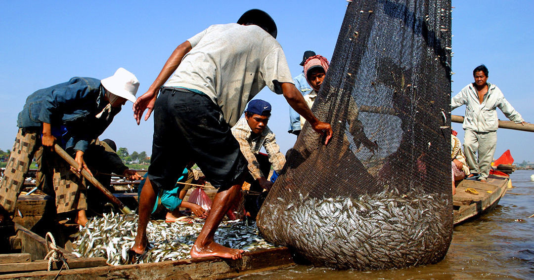 Unloading a dai net on Tonle River