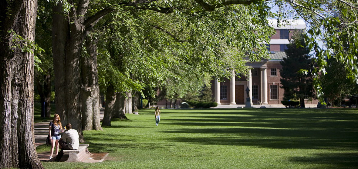 The University's historic Quadrangle with green grass and a few students walking across it