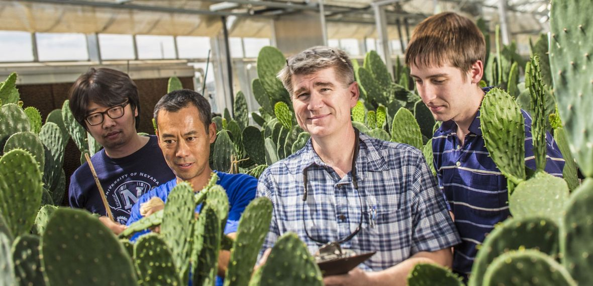 John Cushman is shown with members of his research working in the University's Greenhouse Complex.