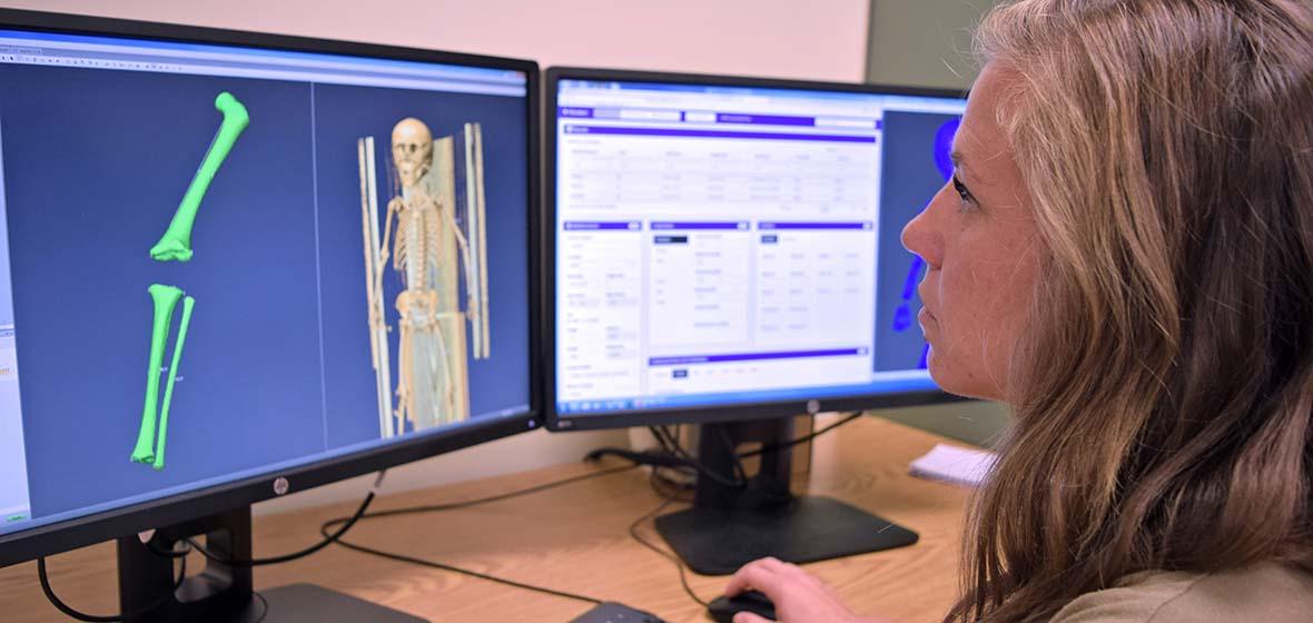 Kyra Stull examing long bone measurements on a computer screen
