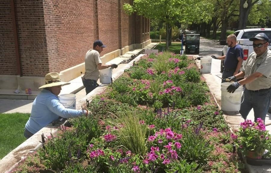 Grounds Services workers planting flowers in the large Veteran's Memorial planter outside the Pennington Student Achievement Center