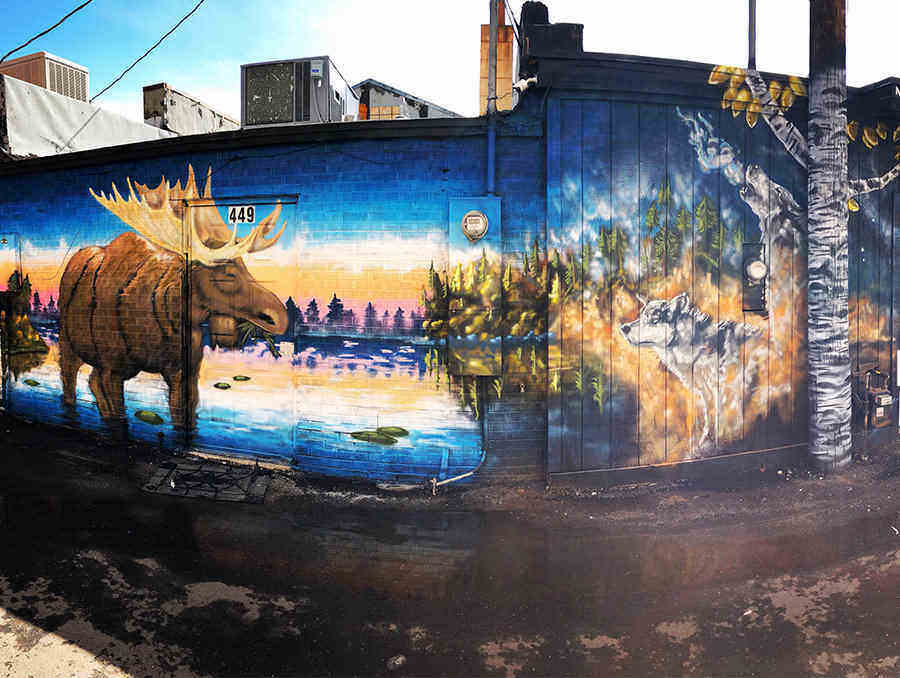 "Two street art murals adorn the wall of a business in Elko, Nev. These murals were painted by Salt Lake City-based muralist Justin Johnson. This image features two murals. The first is a nature scene with wildlife and aspen trees. This mural is titled ""Ghost Wolf Killah."" The second mural in the image is titled, ""The 36 acres."""