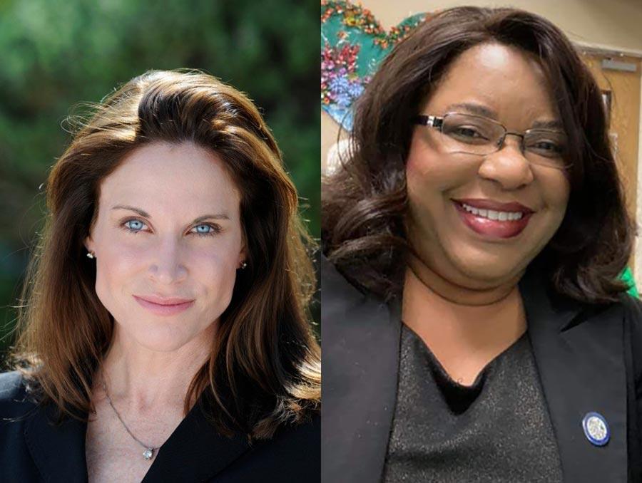 Maureen Schafer and Laura E. Perkins