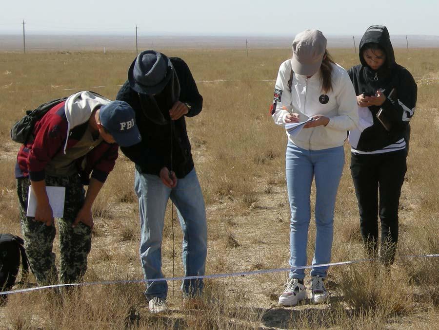 Four Uzbekistan grad students measuring sagebrush in a field