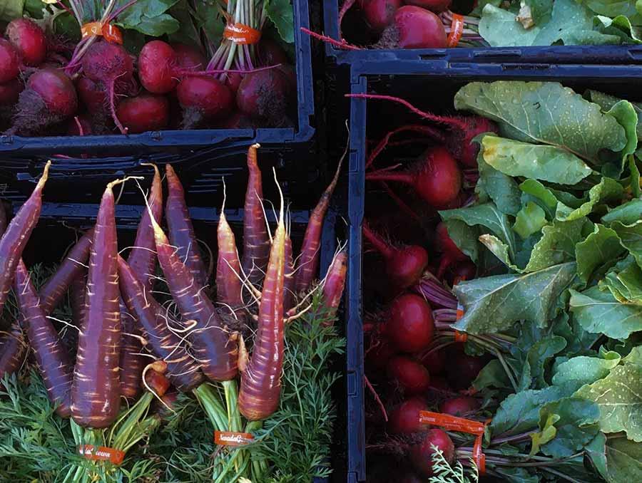 Crates of fresh produce