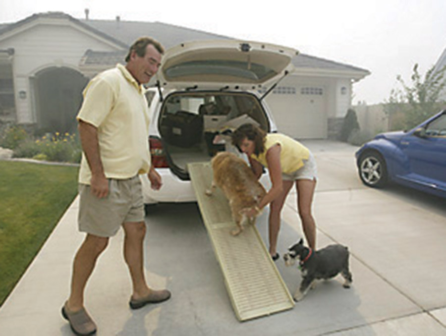 People helping dogs into a car with a ramp