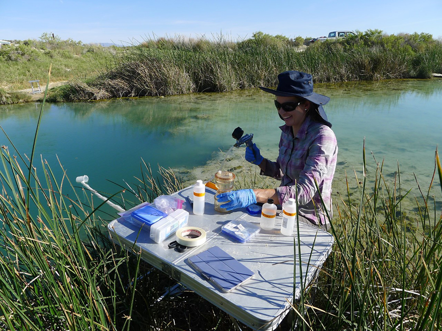 Bridget Ayling sampling water