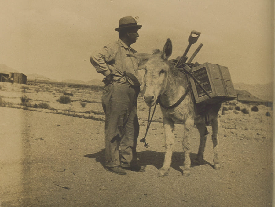Image of a man standing next to a donkey.