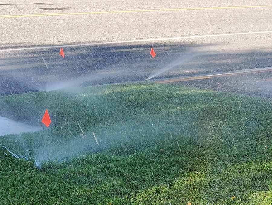 Active sprinklers on a lawn.