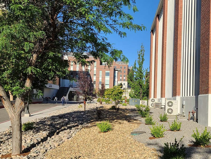 Landscape image of Mikeal Carver's beautification project at the University's chemistry building