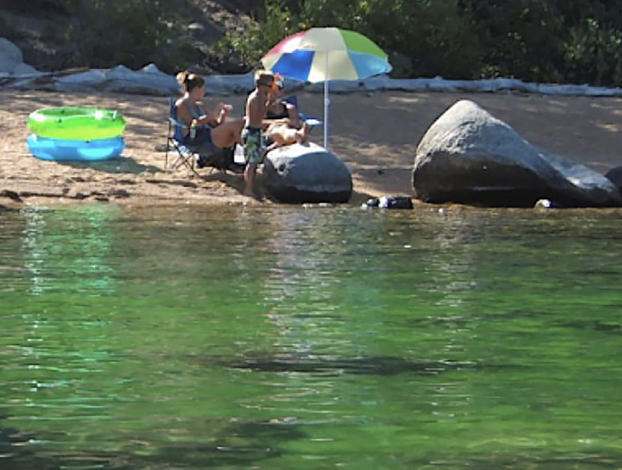 algae bloom at Lake Tahoe beach