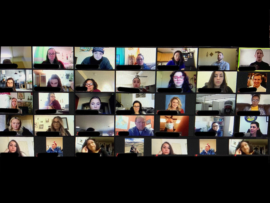 Screen shot of a Zoom conference call with attendees for Social Work Advocacy Day