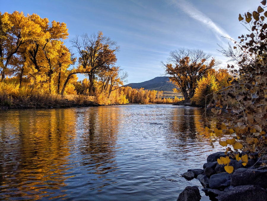 Photo of the Truckee River in fall.