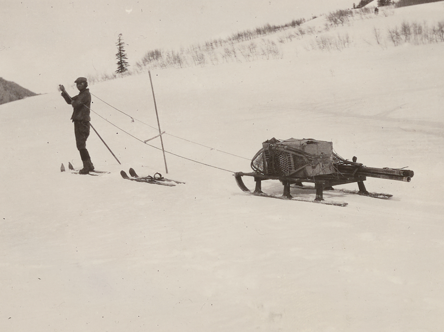 Historical photogtaph of Edward Church pulling his sleigh of gear while on a snow survey.