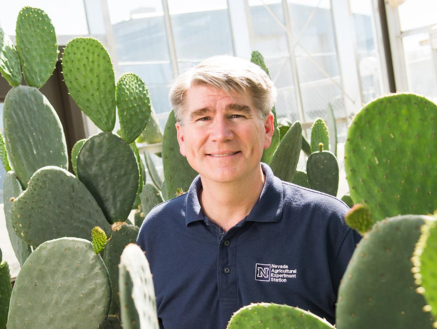 John Cushman surrounded by cactus plants.