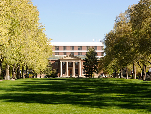 Mackay Mines building is pictured in the distance down the Quad, with trees lining both sides