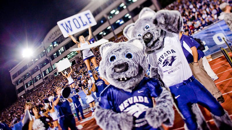 University of Nevada, Reno mascots, Alphie and Wolfie, wear Wolf Pack football jerseys and cheer on the sidelines as cheerleaders pump up the crowd behind them.
