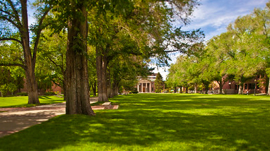 The quad at the University of Nevada, Reno, a large grass area lined with massive trees and the Mackay School of Mines visible at the end of the quad.